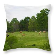 The Cows Of May Throw Pillow