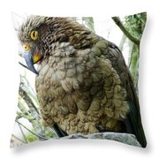 The Crafty Kea Throw Pillow