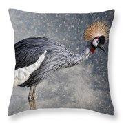 The Crane Throw Pillow