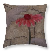 The Creation Of Eve Throw Pillow by Barbara St Jean