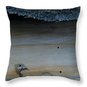 The Creature That Ate The Rings Of Saturn  Throw Pillow