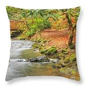 The Creek 0061 Throw Pillow