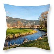 The Creek Runs Through Throw Pillow