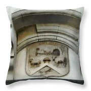 The Crest Of The Christchurch City Council Throw Pillow