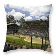 The Crocoseum At The Australia Zoo Throw Pillow