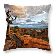 The Crooked Old Tree Throw Pillow