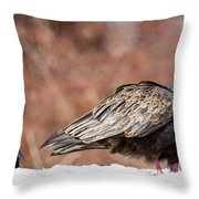 The Crow And Vulture Throw Pillow