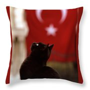 The Curious Cat Throw Pillow