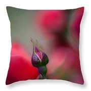 The Curve And The Tip Throw Pillow