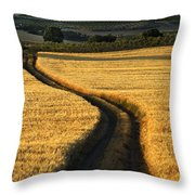 The Curved Way. Throw Pillow