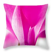 The Cyclamen That Fought Back Throw Pillow