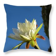 The Daily Bloom Throw Pillow