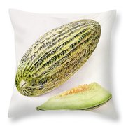 The Damsha Marrow  Throw Pillow by William Hooker