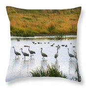 The Dance Of The Sandhill Cranes Throw Pillow