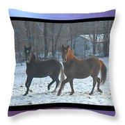 The Dancing Paso Fino Stallions Throw Pillow