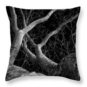 The Dark And The Tree 2 Throw Pillow by Fabio Giannini