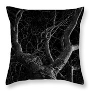 The Dark And The Tree Throw Pillow