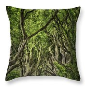 The Dark Hedges Throw Pillow by Evelina Kremsdorf