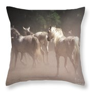 The Daughters Of The Desert Throw Pillow