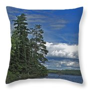 The Day After The Storm Throw Pillow