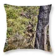 The Death Of A Tree V4 Throw Pillow