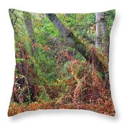 The Deep Rainy In The Mysterious Forest Throw Pillow