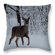 The Deer In The Snow Throw Pillow