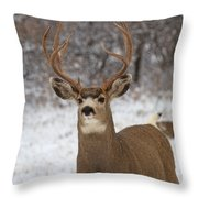 The Defender Throw Pillow