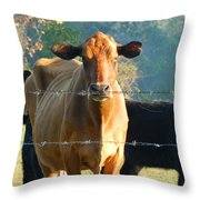 the Defiant One Throw Pillow