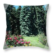 The Delicate And The Mighty Throw Pillow
