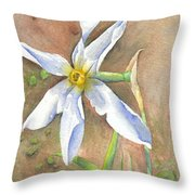 The Delicate Autumn Lady - Narcissus Serotinus Throw Pillow