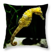 The Derby Throw Pillow