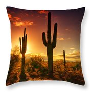 The Desert Awakens  Throw Pillow