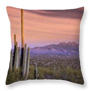 The Desert Beckons  Throw Pillow
