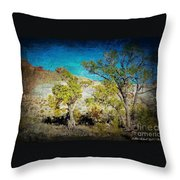 The Desert Throw Pillow