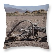 The Desert Floor Throw Pillow