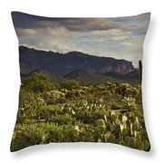 The Desert Is Wearing A Carpet Of Green  Throw Pillow