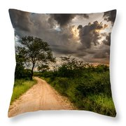 The Dirt Road Throw Pillow