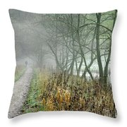 The Disappearing Man - Wolfscote Dale Throw Pillow