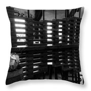The Divider Throw Pillow