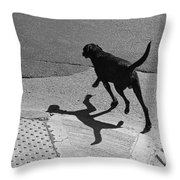 The Dog -and The Cat- Throw Pillow