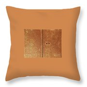 The Door On The Soil- Color Theme Throw Pillow