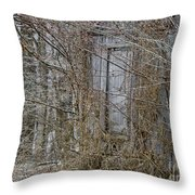 The Door To The Past Throw Pillow by Wilma  Birdwell