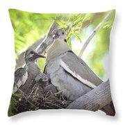 The Dove Family  Throw Pillow