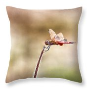 The Dragonfly  Throw Pillow