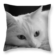 The Dreamer Cat Throw Pillow