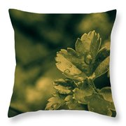 The Drops Throw Pillow
