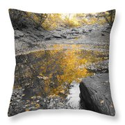 The Dry Creek Bed Throw Pillow