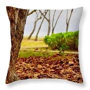The Dry Season Throw Pillow