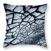 The Dry Weep  Throw Pillow